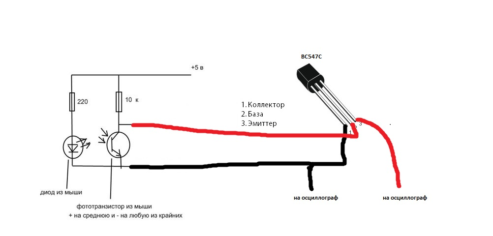 Мышцы паха анатомия картинки гимнастика эффективный