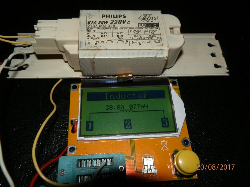 P8201680.JPG