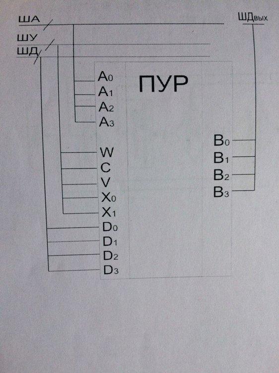 NUYbKZydl7k.jpg
