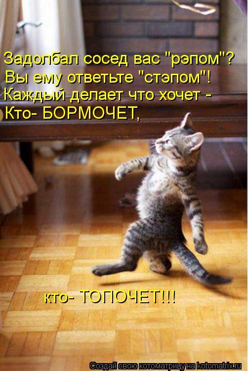 1348243839_kotomatritsa_iz.jpg