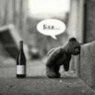 BeerBear91