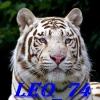 leon74